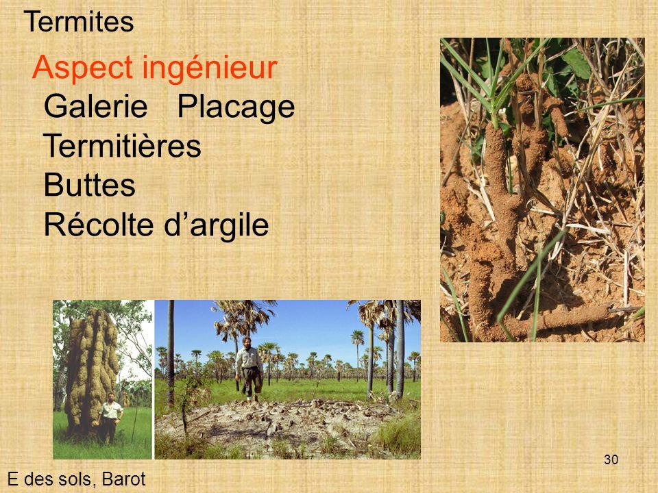 30 Termites E des sols, Barot Aspect ingénieur Galerie Placage Termitières Buttes Récolte dargile