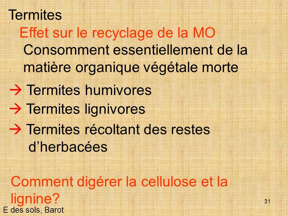 31 E des sols, Barot Termites Effet sur le recyclage de la MO Consomment essentiellement de la matière organique végétale morte Termites humivores Ter