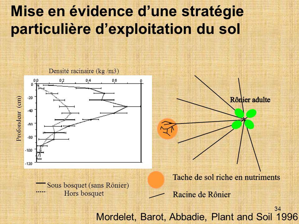 34 Mise en évidence dune stratégie particulière dexploitation du sol Sous bosquet (sans Rônier) Hors bosquet Densité racinaire (kg /m3) Profondeur (cm