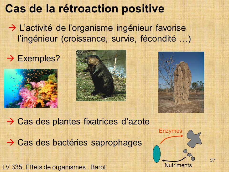 37 Cas de la rétroaction positive LV 335, Effets de organismes, Barot Exemples? Lactivité de lorganisme ingénieur favorise lingénieur (croissance, sur