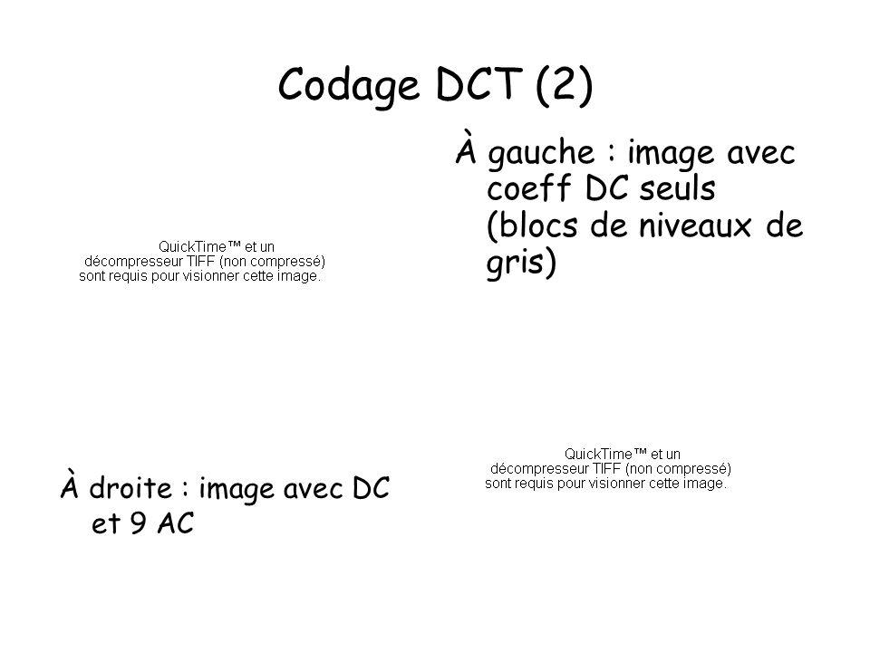 Codage DCT (2) À gauche : image avec coeff DC seuls (blocs de niveaux de gris) À droite : image avec DC et 9 AC