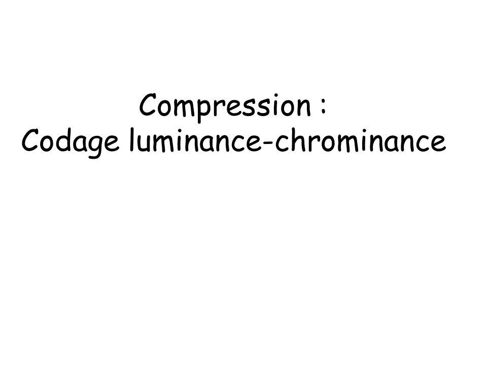 Luminance-chrominance Lœil est plus sensible à la lumière quà la couleur, donc on conserve plus dinformations de luminance que de chrominance : On passe de R V B -> Y C r C b par des formules simples Y = 0,299 * Rouge + 0,587 * Vert + 0,114 * Bleu C r = Rouge - Y C b = Bleu - Y Puis on agrège les composantes couleurs C r C b voisines Souvent Y C r C b est codé en 4:2:2 (on ne garde la couleur que des lignes paires)