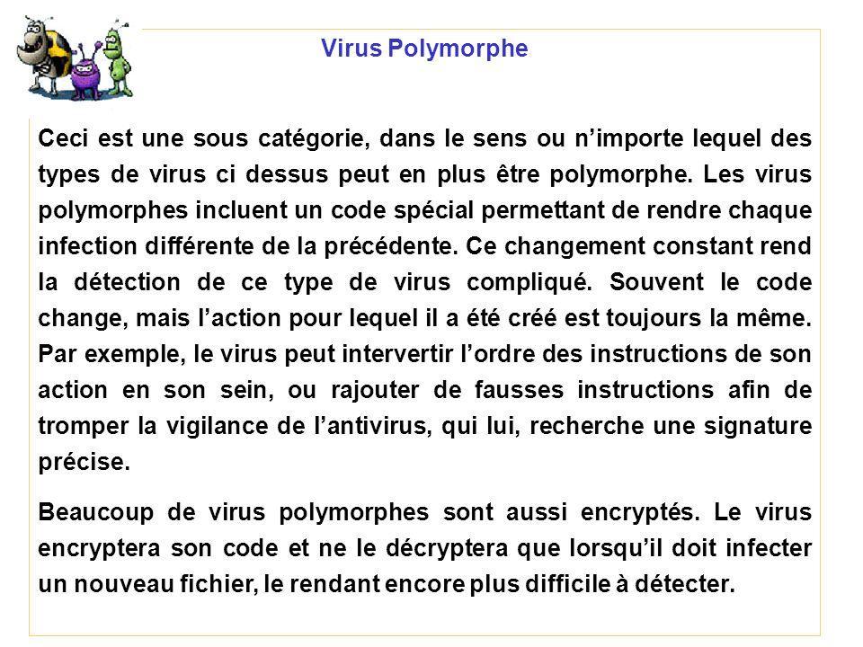 Virus Polymorphe Ceci est une sous catégorie, dans le sens ou nimporte lequel des types de virus ci dessus peut en plus être polymorphe. Les virus pol