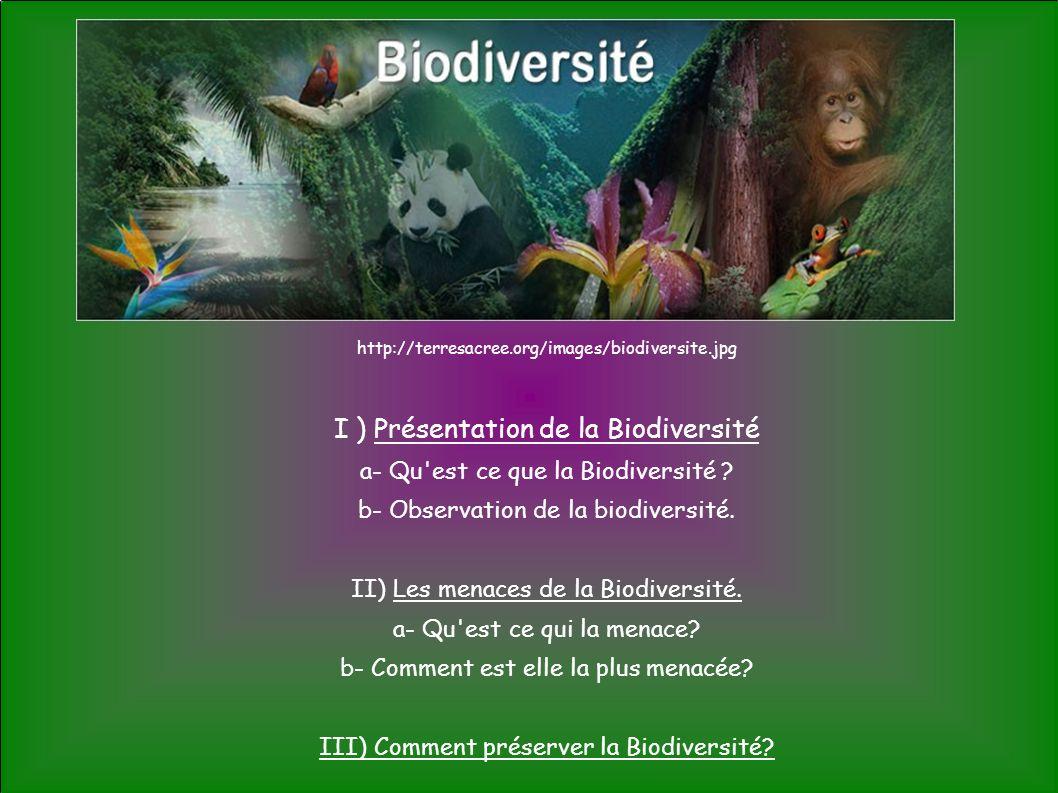 I ) Présentation de la Biodiversité a ) Qu est ce que la biodiversité .