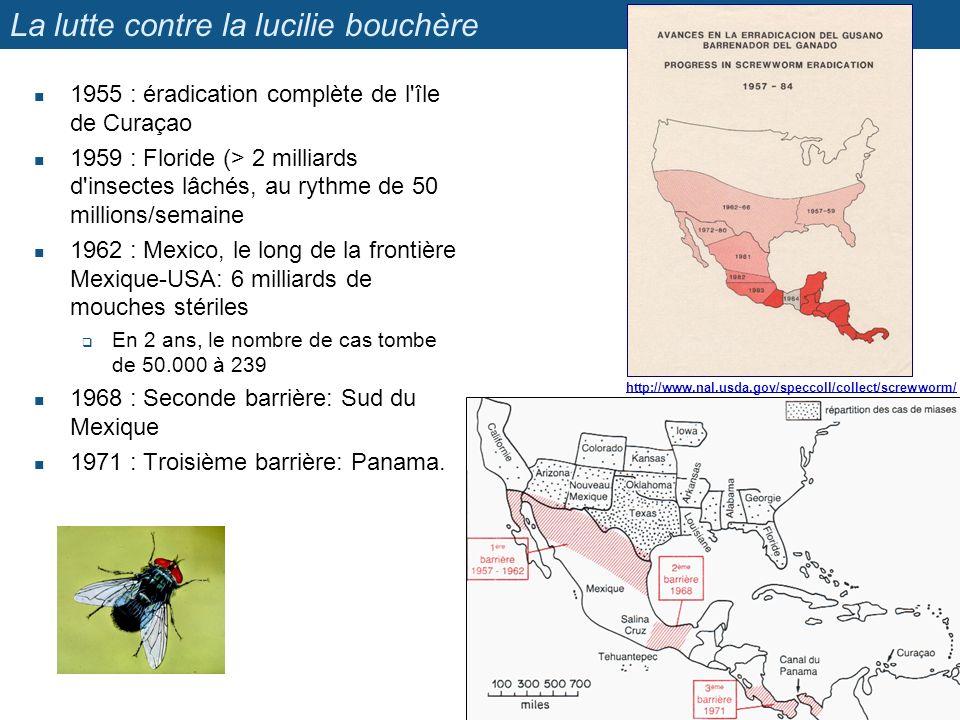 La lutte contre la lucilie bouchère 1955 : éradication complète de l'île de Curaçao 1959 : Floride (> 2 milliards d'insectes lâchés, au rythme de 50 m