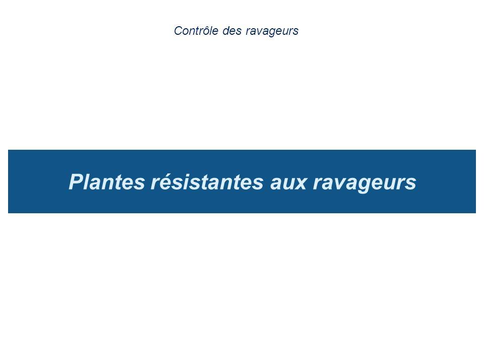 Plantes résistantes aux ravageurs Contrôle des ravageurs