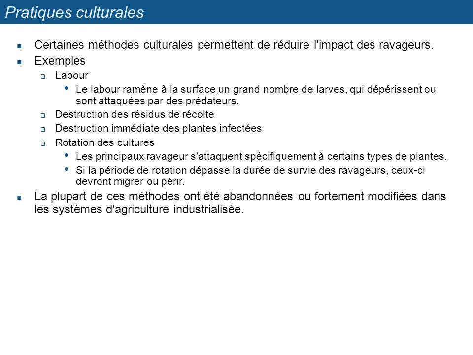 Pratiques culturales Certaines méthodes culturales permettent de réduire l'impact des ravageurs. Exemples Labour Le labour ramène à la surface un gran