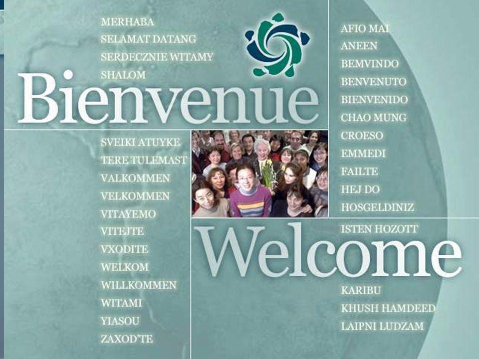 Identité générationnelle dans le milieu de travail Motiver, récompenser et reconnaître ses employés 25 novembre 2008 Dr.