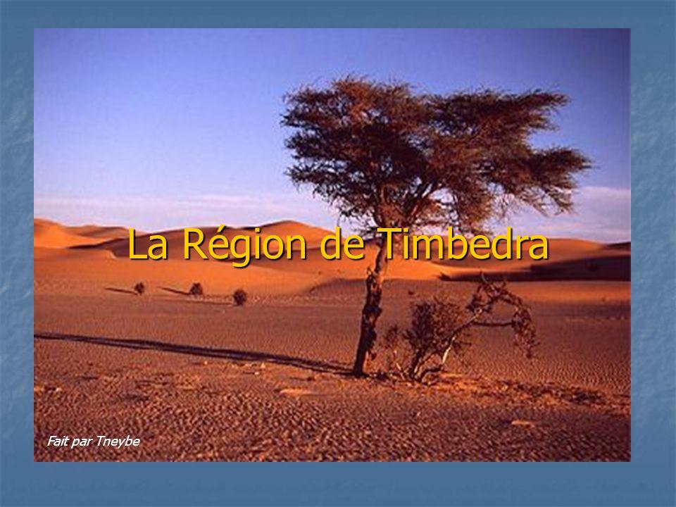 La Région de Timbedra Fait par Tneybe