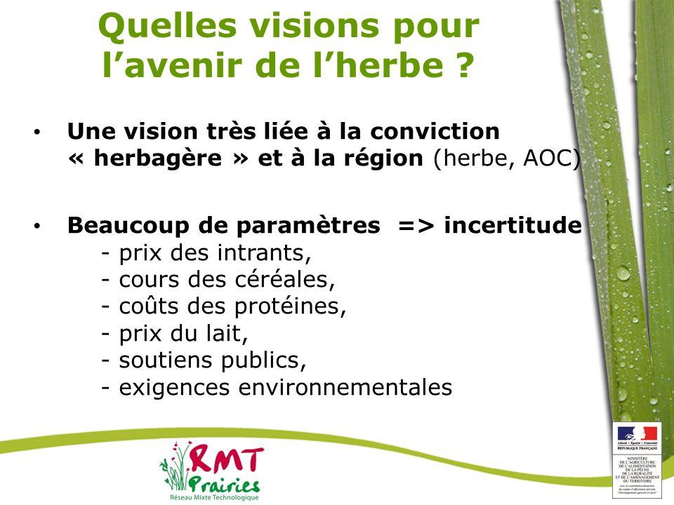 Quelles visions pour lavenir de lherbe ? Une vision très liée à la conviction « herbagère » et à la région (herbe, AOC) Beaucoup de paramètres => ince