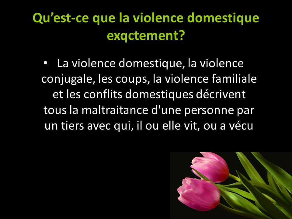 Quest-ce que la violence domestique exqctement? La violence domestique, la violence conjugale, les coups, la violence familiale et les conflits domest