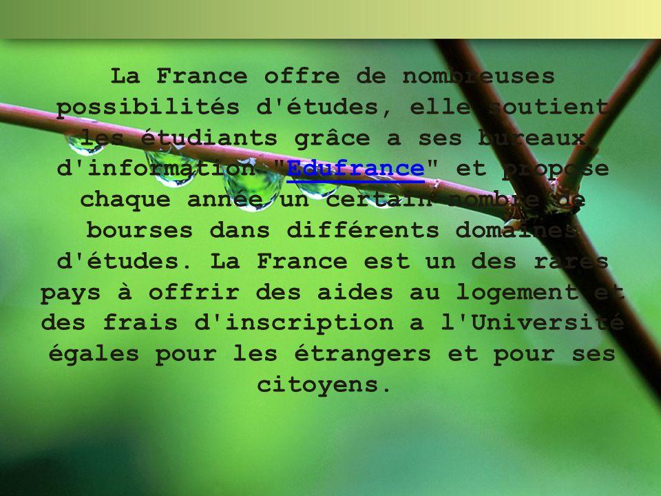 La France offre de nombreuses possibilités d'études, elle soutient les étudiants grâce а ses bureaux d'information