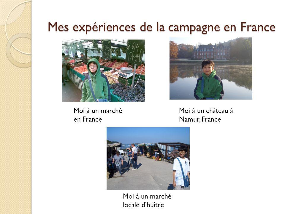 Mes expériences de la campagne en France Moi à un marché en France Moi à un château à Namur, France Moi à un marché locale dhuître