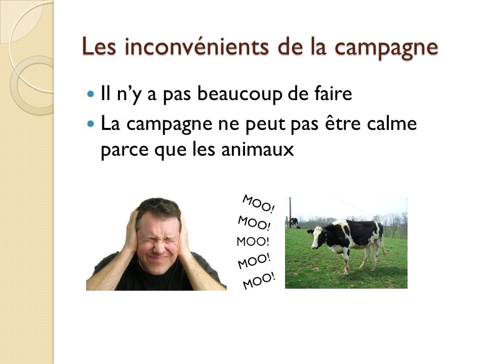 Les inconvénients de la campagne Il ny a pas beaucoup de faire La campagne ne peut pas être calme parce que les animaux MOO!