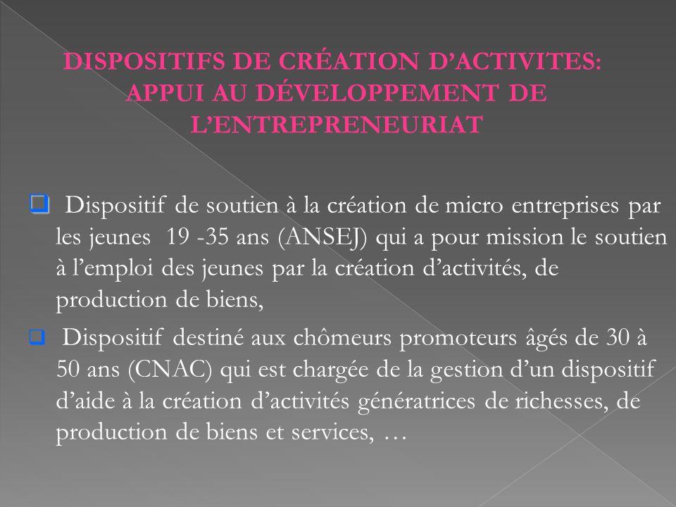 DISPOSITIFS DE CRÉATION DACTIVITES: APPUI AU DÉVELOPPEMENT DE LENTREPRENEURIAT Dispositif de soutien à la création de micro entreprises par les jeunes