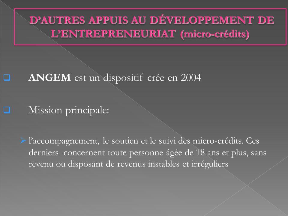 ANGEM est un dispositif crée en 2004 Mission principale: laccompagnement, le soutien et le suivi des micro-crédits. Ces derniers concernent toute pers
