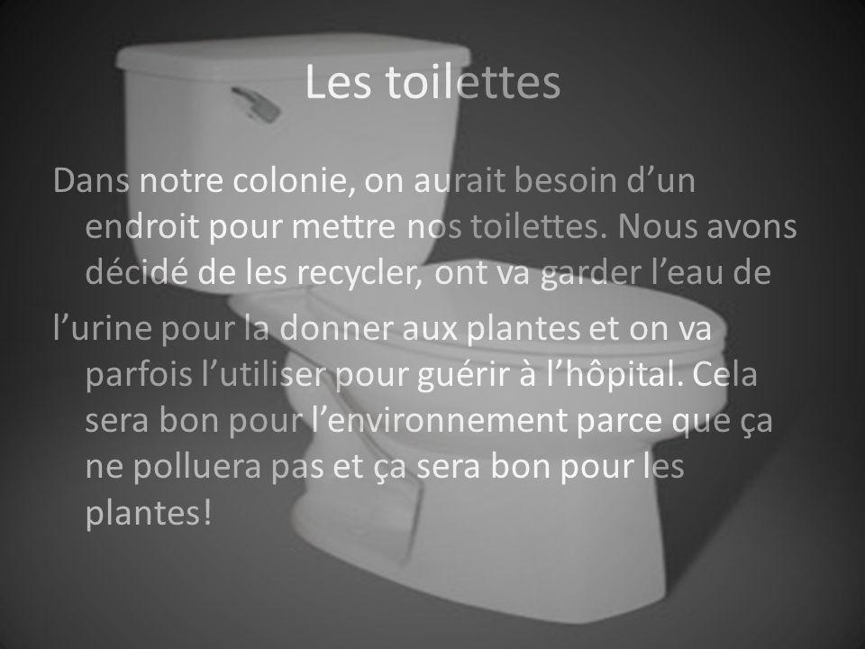 Les toilettes Dans notre colonie, on aurait besoin dun endroit pour mettre nos toilettes.