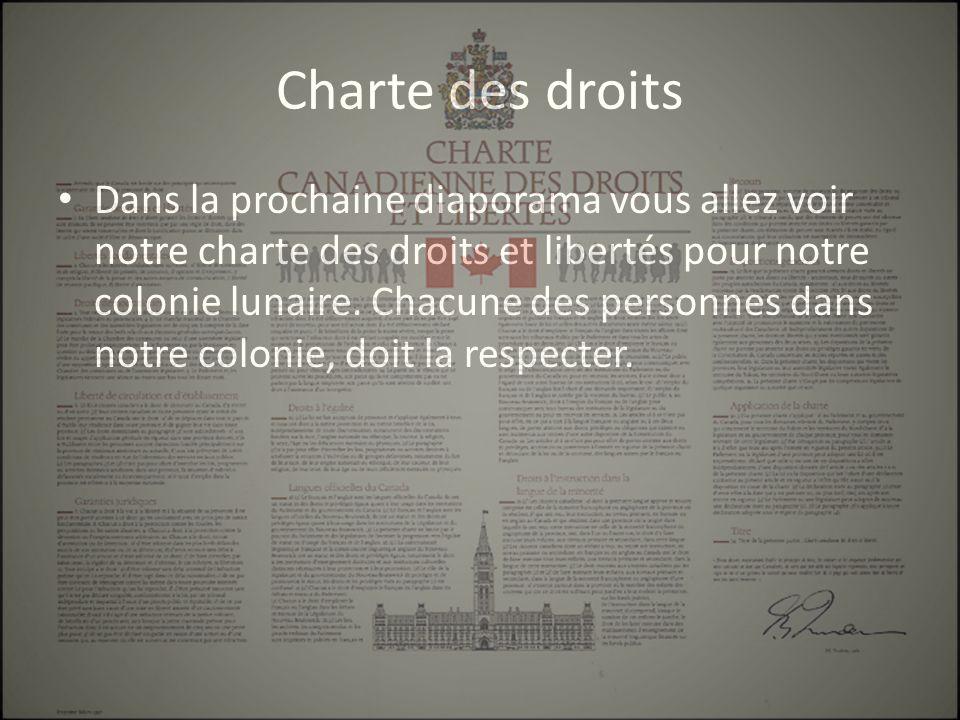 Charte des droits Dans la prochaine diaporama vous allez voir notre charte des droits et libertés pour notre colonie lunaire.