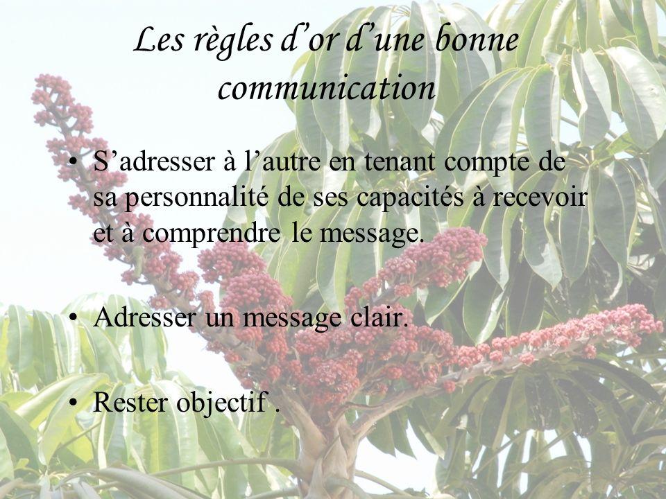 Les règles dor dune bonne communication Sadresser à lautre en tenant compte de sa personnalité de ses capacités à recevoir et à comprendre le message.