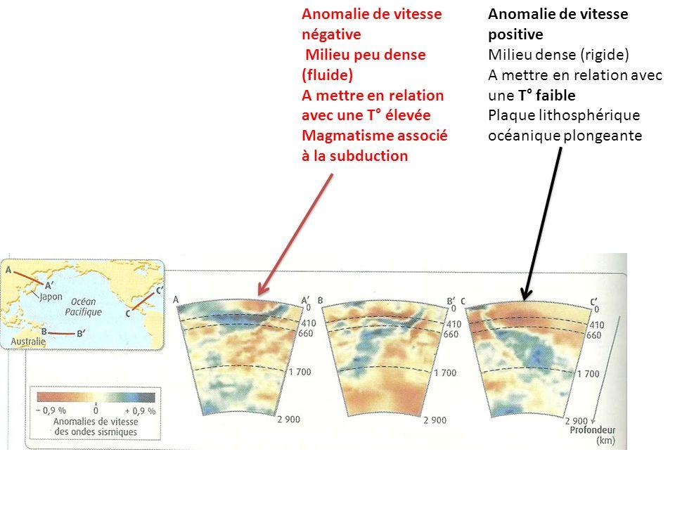 Anomalie de vitesse positive Milieu dense (rigide) A mettre en relation avec une T° faible Plaque lithosphérique océanique plongeante Anomalie de vite