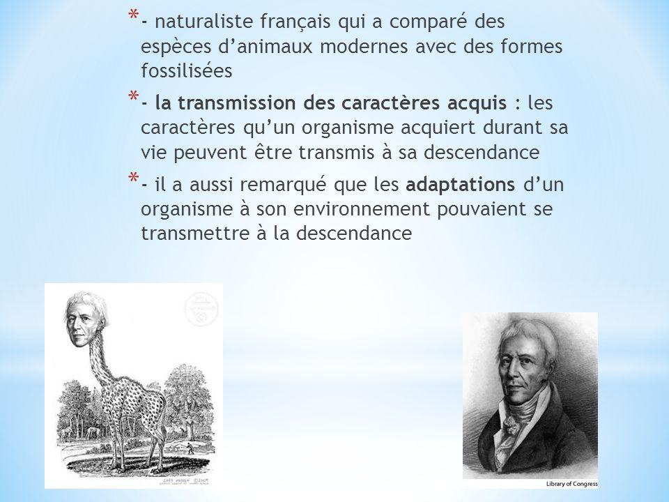* - naturaliste français qui a comparé des espèces danimaux modernes avec des formes fossilisées * - la transmission des caractères acquis : les carac
