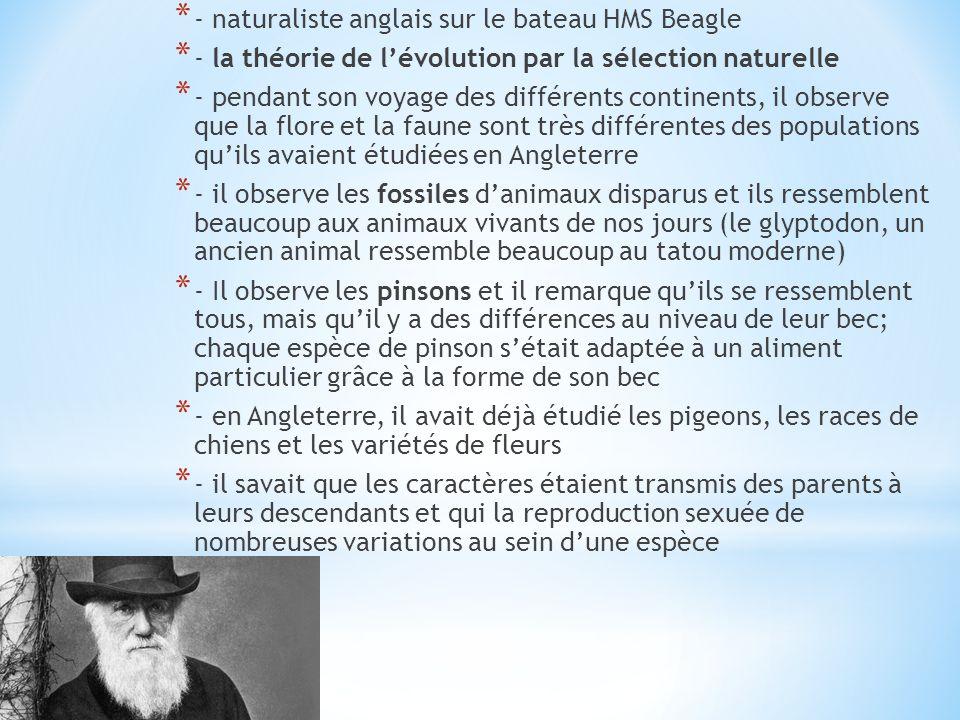 * - naturaliste anglais sur le bateau HMS Beagle * - la théorie de lévolution par la sélection naturelle * - pendant son voyage des différents contine