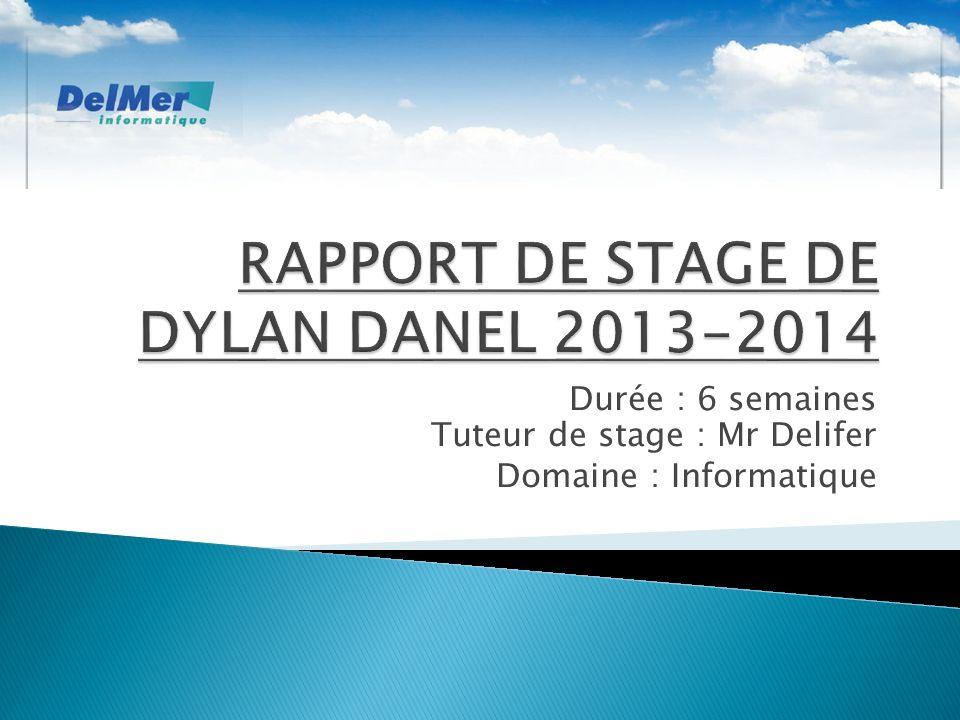 Durée : 6 semaines Tuteur de stage : Mr Delifer Domaine : Informatique