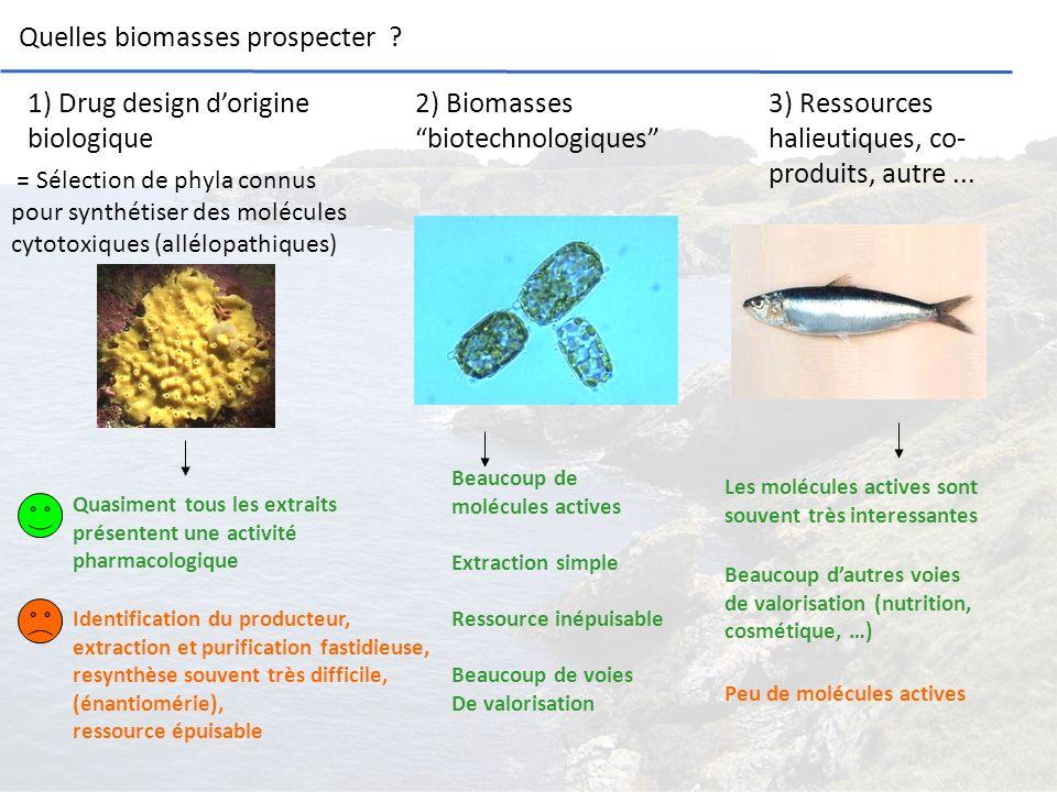 Quelles biomasses prospecter ? 1) Drug design dorigine biologique = Sélection de phyla connus pour synthétiser des molécules cytotoxiques (allélopathi