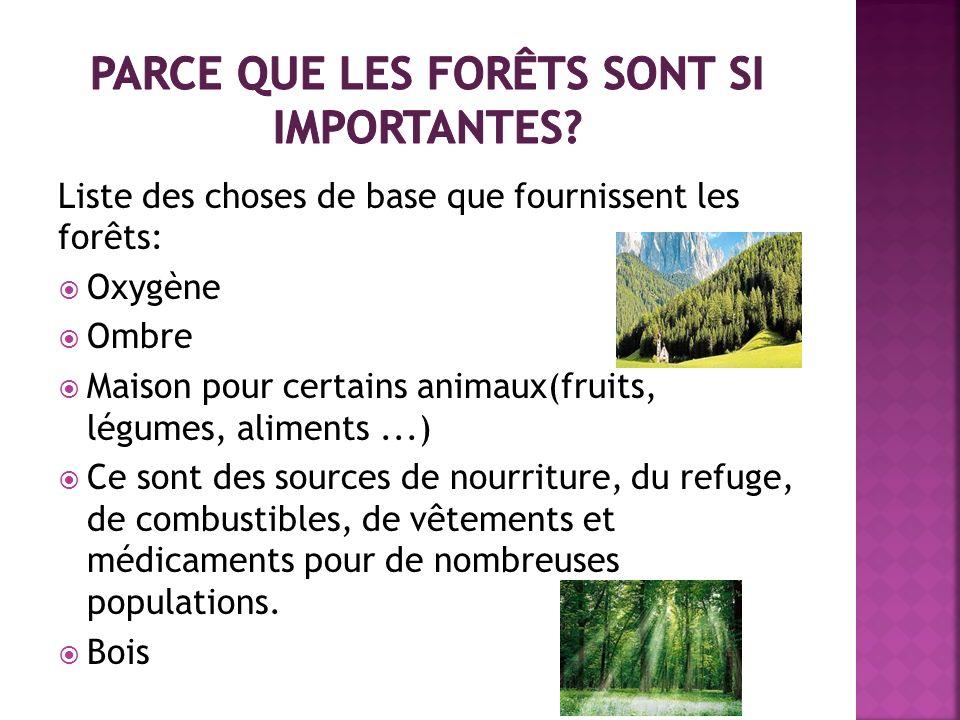 Liste des choses de base que fournissent les forêts: Oxygène Ombre Maison pour certains animaux(fruits, légumes, aliments...) Ce sont des sources de n