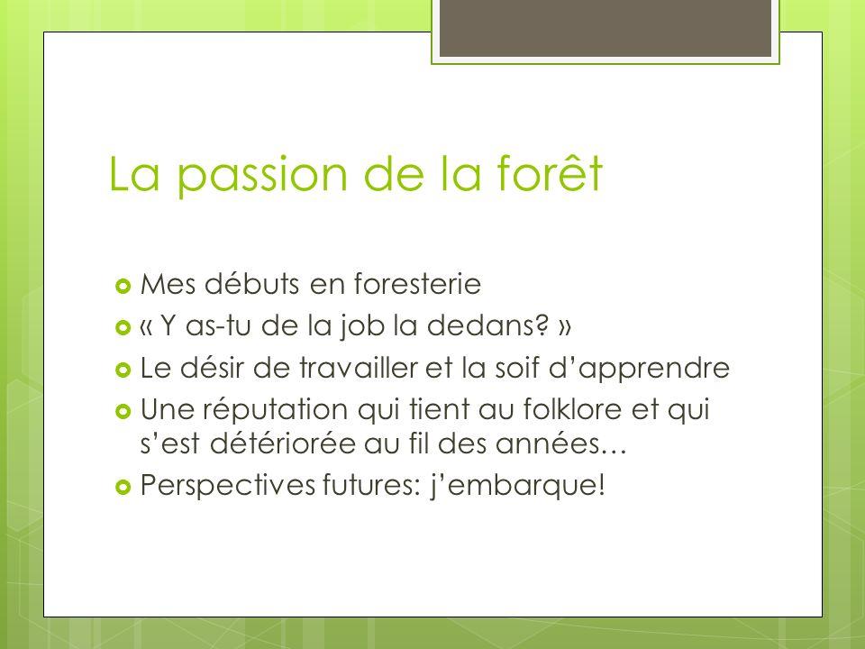La passion de la forêt Mes débuts en foresterie « Y as-tu de la job la dedans.