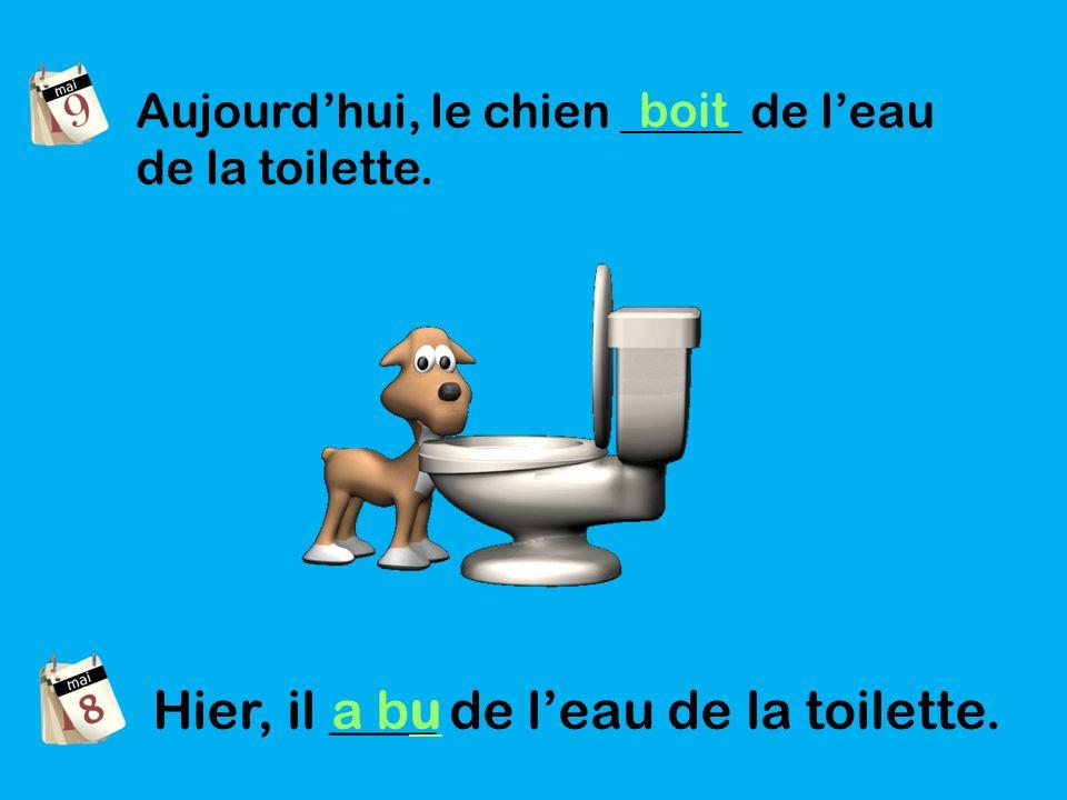 Aujourdhui, le chien _____ de leau de la toilette. boit Hier, il ____ de leau de la toilette. a bu