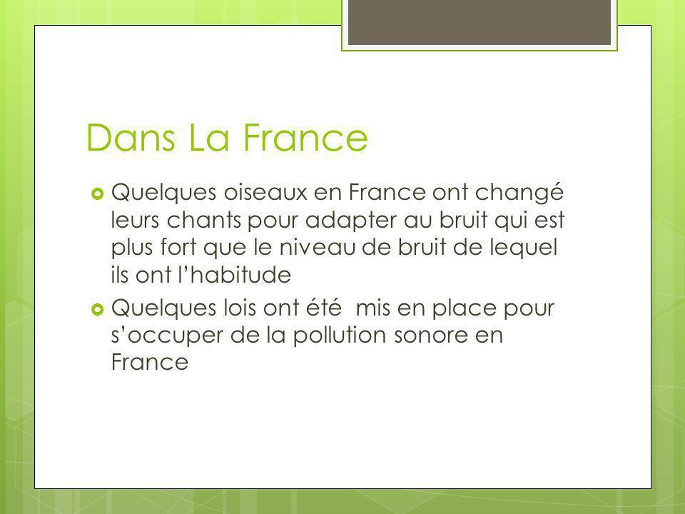 Dans La France Quelques oiseaux en France ont changé leurs chants pour adapter au bruit qui est plus fort que le niveau de bruit de lequel ils ont lha