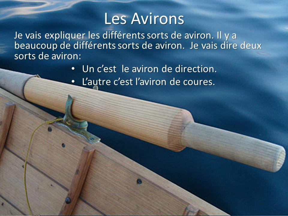 Les Avirons Je vais expliquer les différents sorts de aviron. Il y a beaucoup de différents sorts de aviron. Je vais dire deux sorts de aviron: Un ces