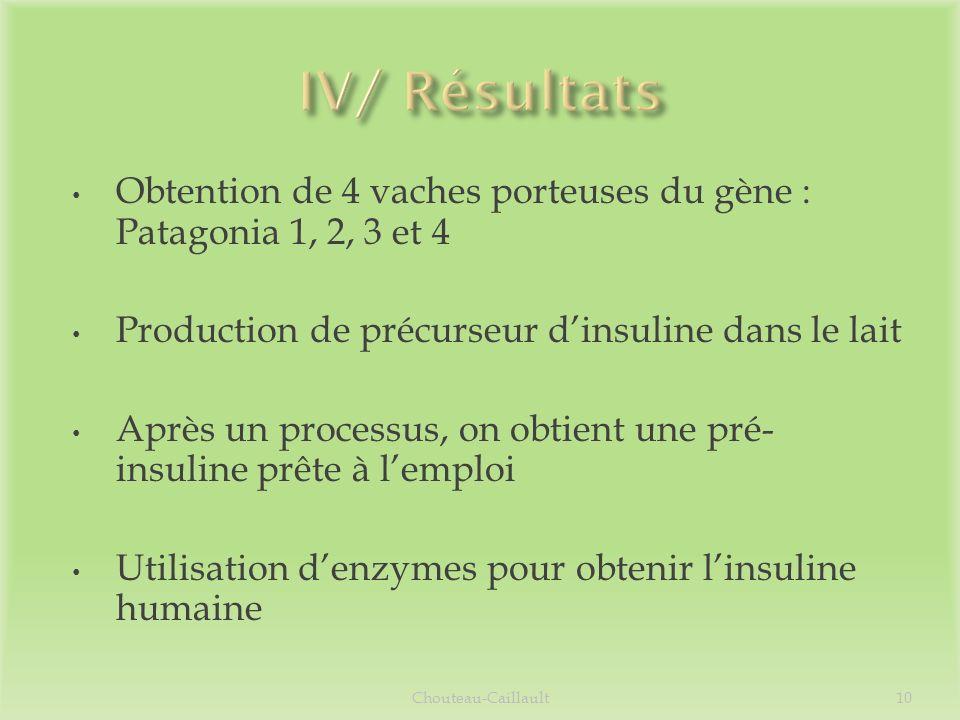 Obtention de 4 vaches porteuses du gène : Patagonia 1, 2, 3 et 4 Production de précurseur dinsuline dans le lait Après un processus, on obtient une pr