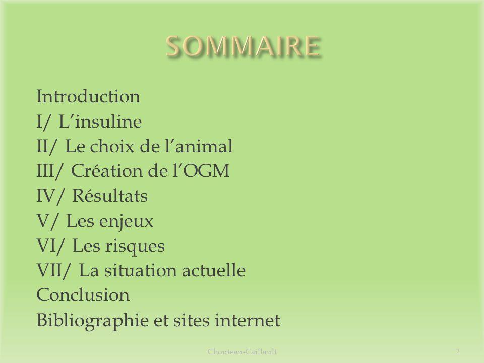 Introduction I/ Linsuline II/ Le choix de lanimal III/ Création de lOGM IV/ Résultats V/ Les enjeux VI/ Les risques VII/ La situation actuelle Conclus