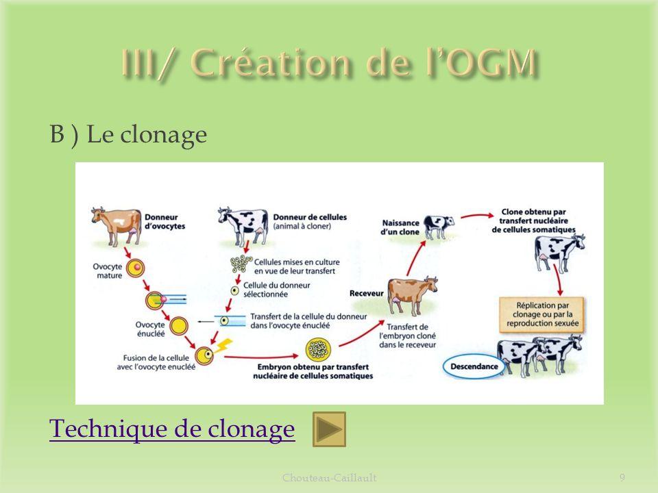 Obtention de 4 vaches porteuses du gène : Patagonia 1, 2, 3 et 4 Production de précurseur dinsuline dans le lait Après un processus, on obtient une pré- insuline prête à lemploi Utilisation denzymes pour obtenir linsuline humaine Chouteau-Caillault10