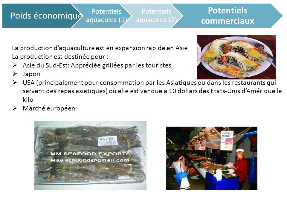 Marché européen: Cas de la France Poids économique Potentiels aquacoles (1) Potentiels aquacoles (2) Potentiels commerciaux spécialisée dans le secteur d activité du commerce de gros (commerce interentreprises) de poissons, crustacés et mollusques