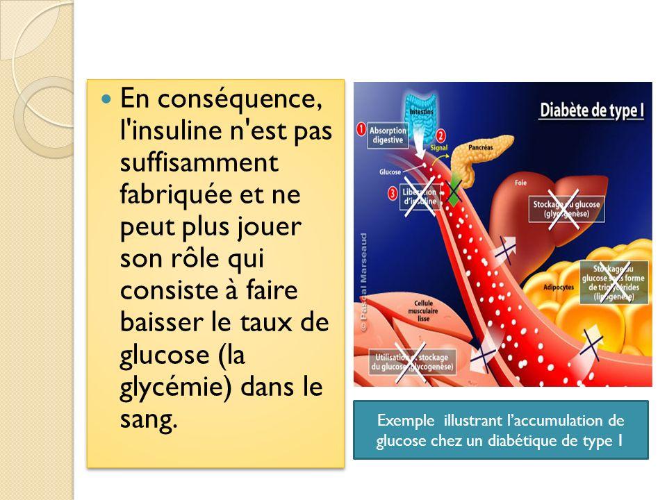 En conséquence, l'insuline n'est pas suffisamment fabriquée et ne peut plus jouer son rôle qui consiste à faire baisser le taux de glucose (la glycémi
