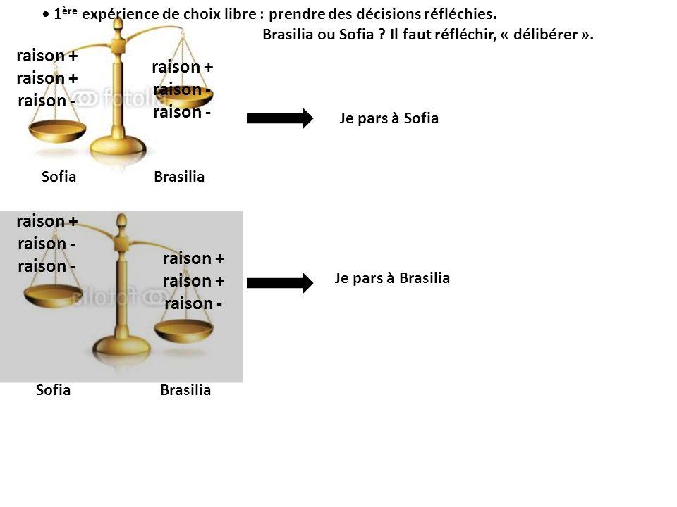 Je pars à Brasilia Sofia Brasilia raison + raison - raison + raison - raison + raison - raison + raison - 1 ère expérience de choix libre : prendre de