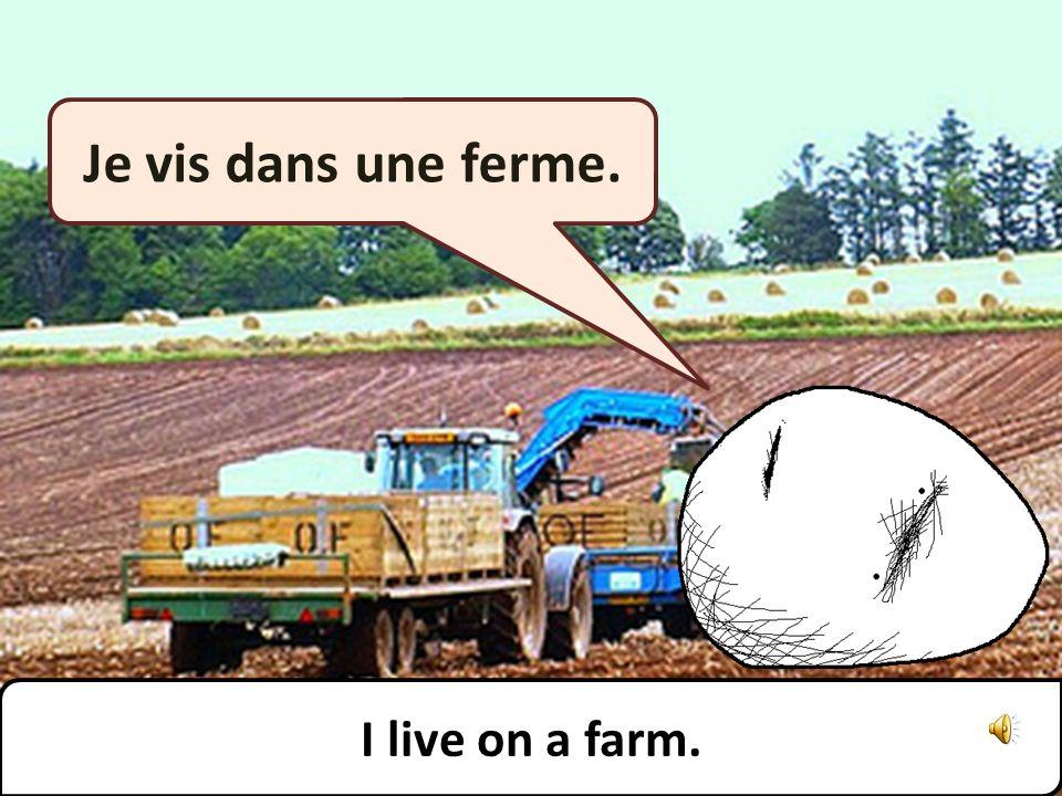 Je vis dans une ferme. I live on a farm.