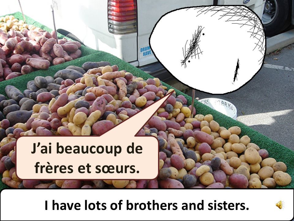 Jai beaucoup de frères et sœurs. I have lots of brothers and sisters.