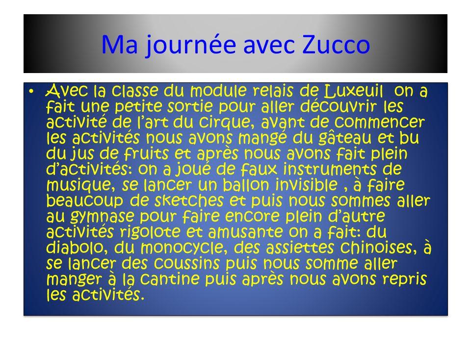 Ma journée avec Zucco Avec la classe du module relais de Luxeuil on a fait une petite sortie pour aller découvrir les activité de lart du cirque, avan