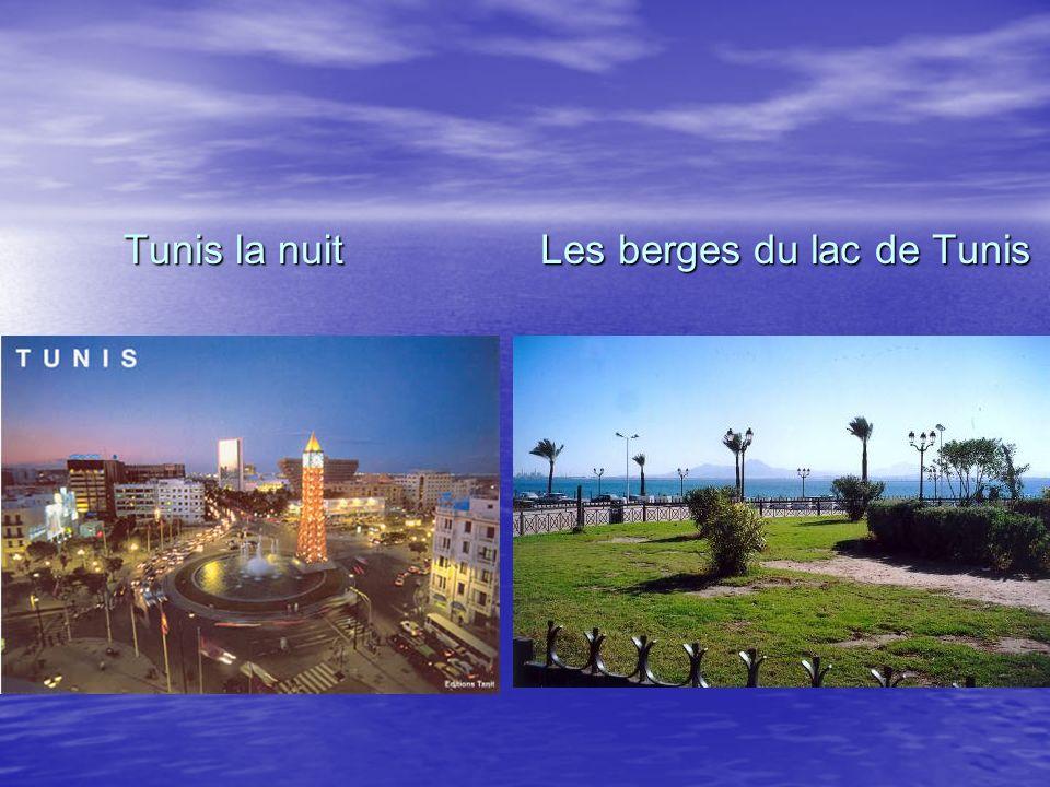 Tunis la nuit Tunis la nuit Les berges du lac de Tunis Les berges du lac de Tunis