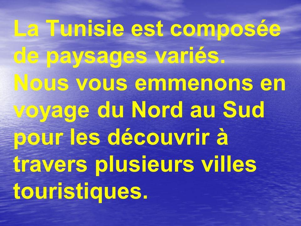 La Tunisie est composée de paysages variés. Nous vous emmenons en voyage du Nord au Sud pour les découvrir à travers plusieurs villes touristiques.