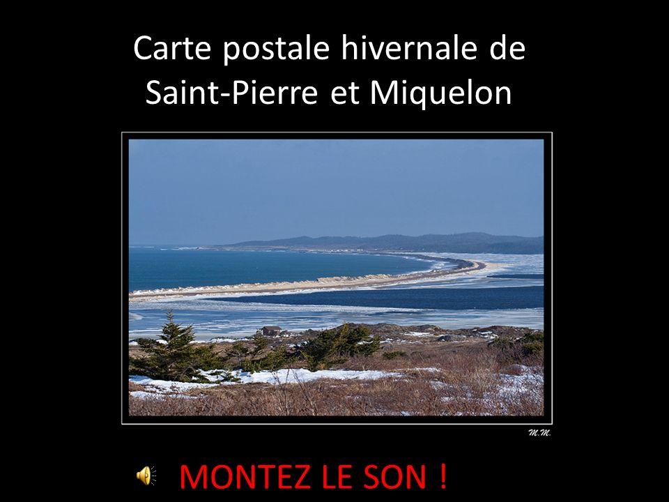 Carte postale hivernale de Saint-Pierre et Miquelon MONTEZ LE SON !