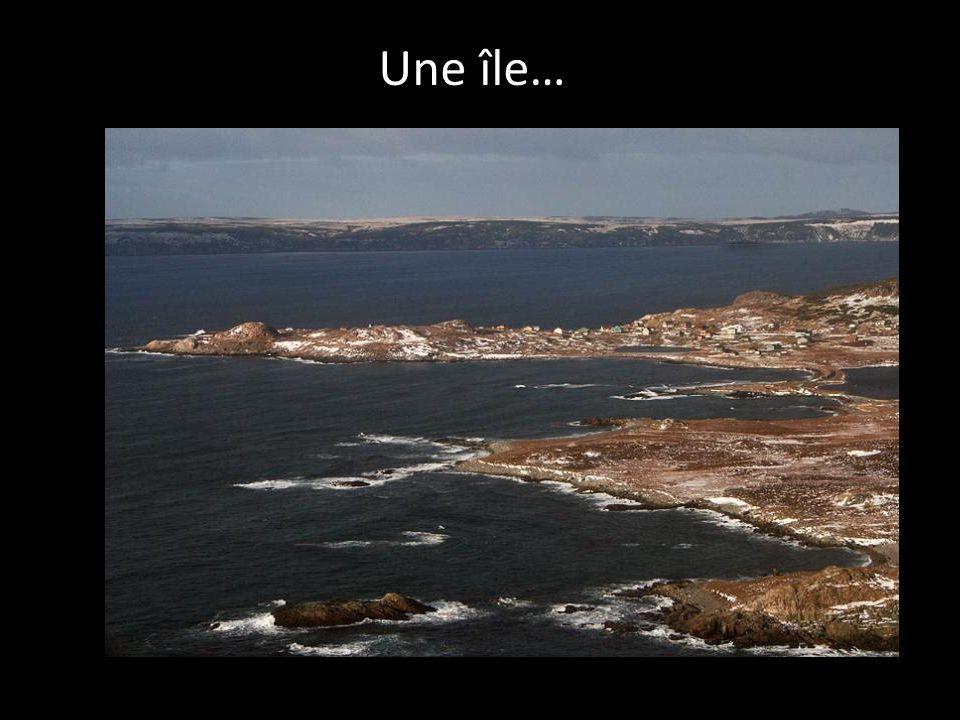 Une île…