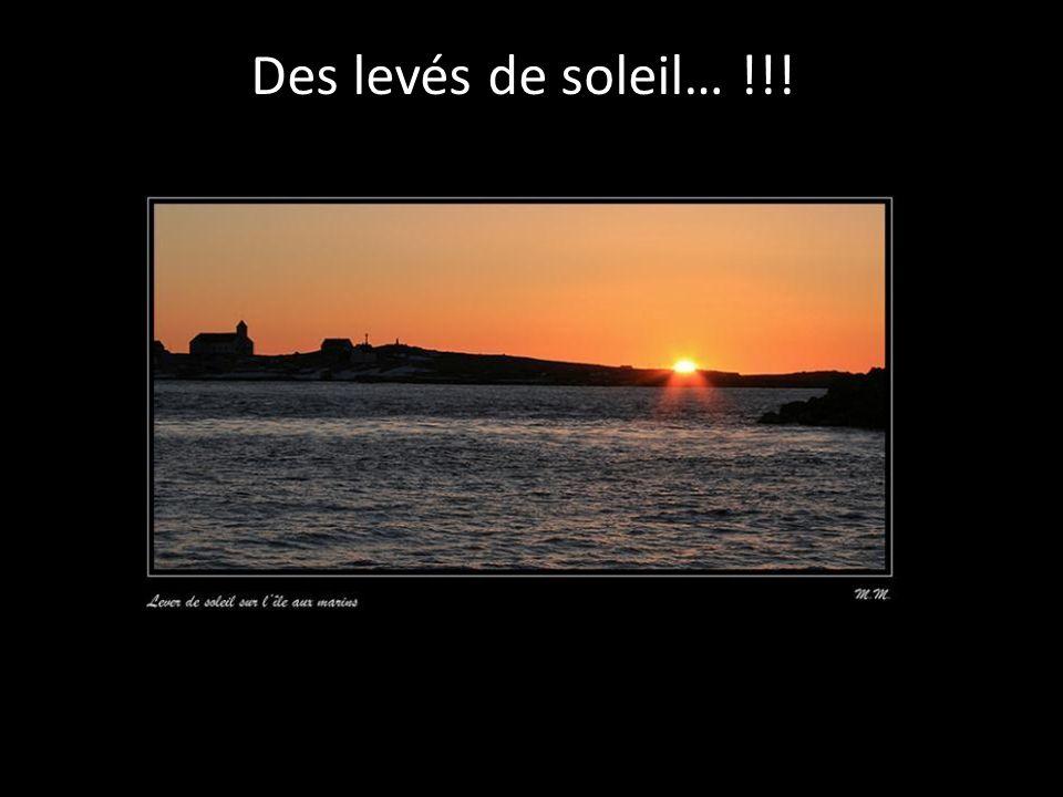 Des levés de soleil… !!!
