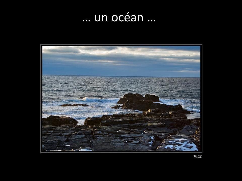 … qui font les océans …