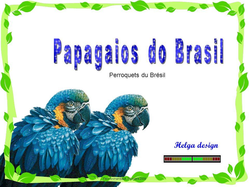 Helga design Perroquets du Brésil Fern Archambault, 3 octobre 2008