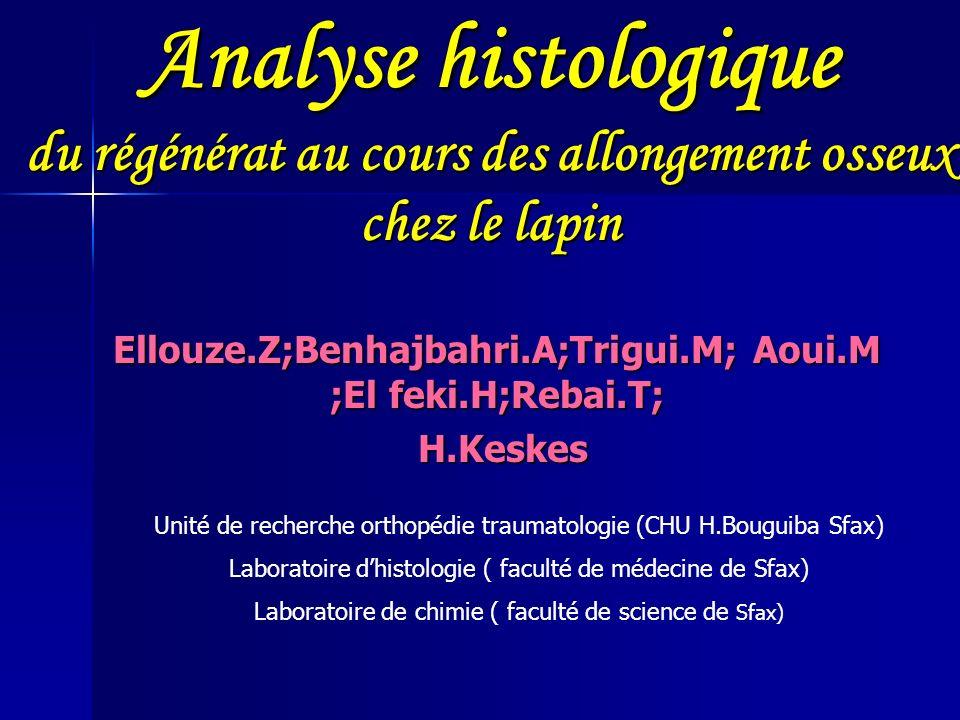 Analyse histologique du régénérat au cours des allongement osseux chez le lapin Ellouze.Z;Benhajbahri.A;Trigui.M; Aoui.M ;El feki.H;Rebai.T; H.Keskes